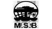 logo.msm